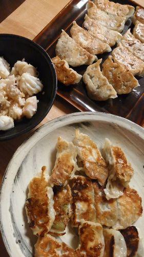 蒸しなす餃子 by nekotano
