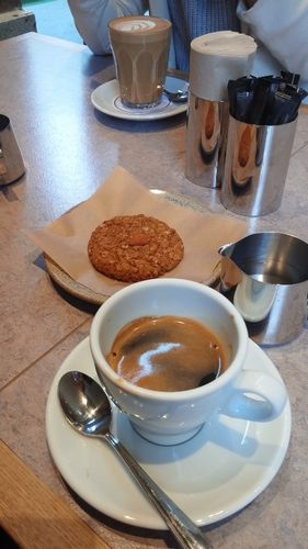 清澄白河でコーヒーを飲む