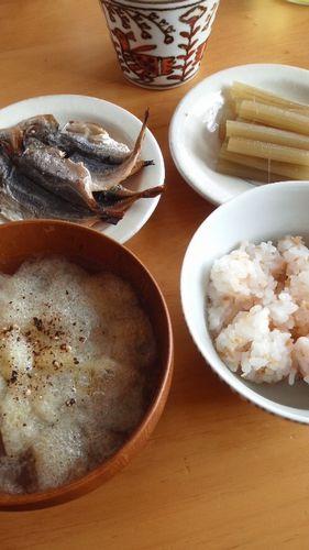 ふきの煮物 by nekotano